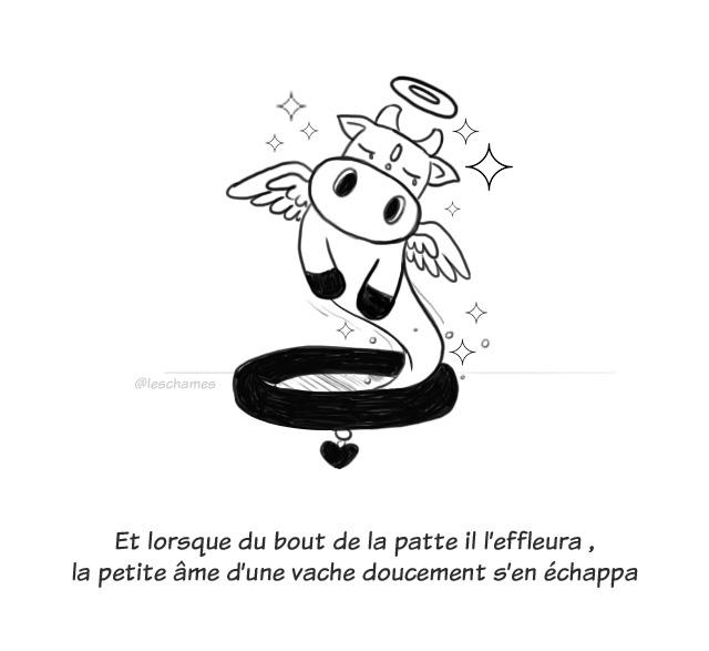 Peau d'âme- page06
