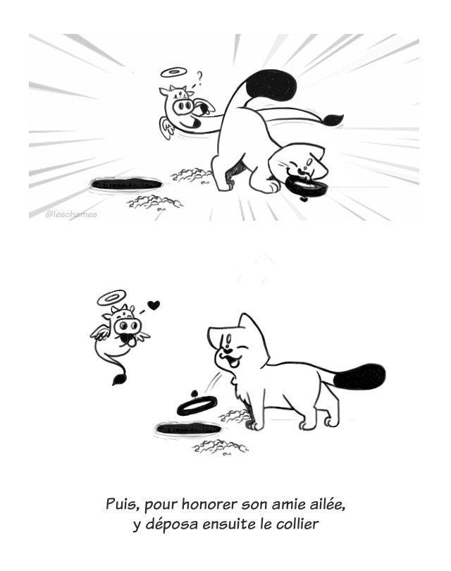 Peau d'âme- page10