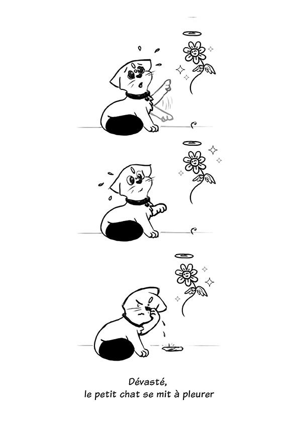 Le chat et la fleur - image 06