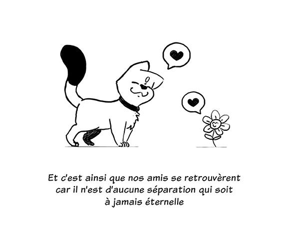 Le chat et la fleur - image 11