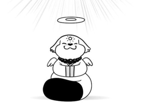 Le secret du Bouddha Chat