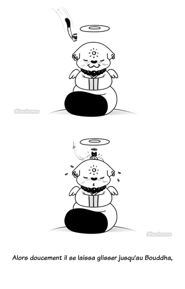 Les Châmes BD - Le secret du Bouddha Chat - Page05