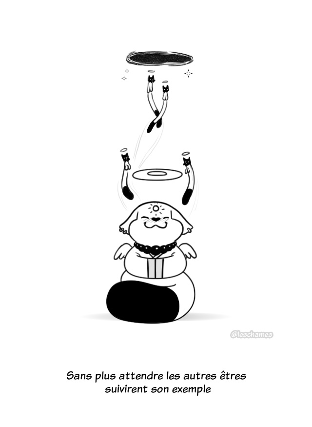 Les Châmes BD - Le secret du Bouddha Chat - Page19