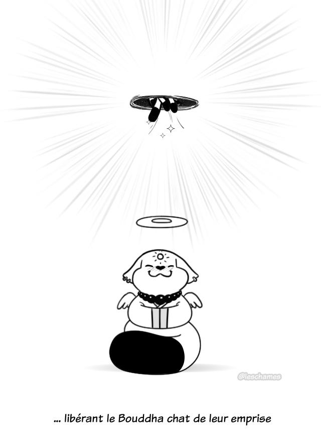 Les Châmes BD - Le secret du Bouddha Chat - Page20