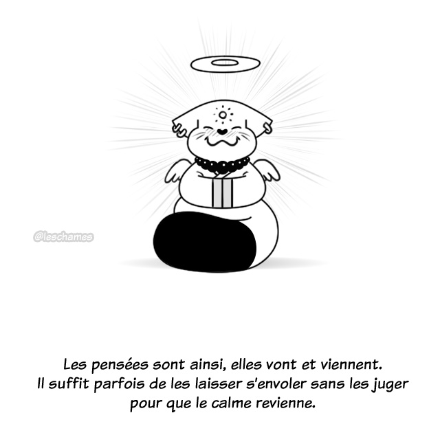Les Châmes BD - Le secret du Bouddha Chat - Page24