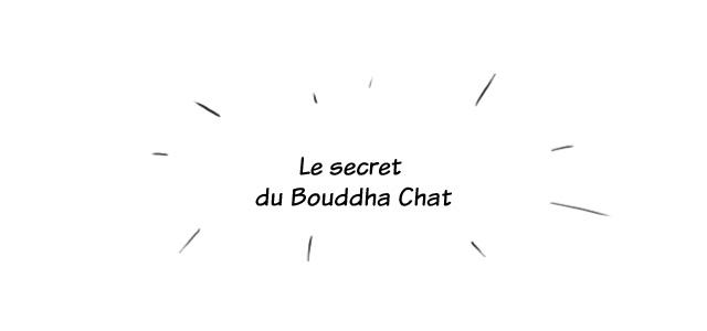 Les Châmes BD - Le secret du Bouddha Chat