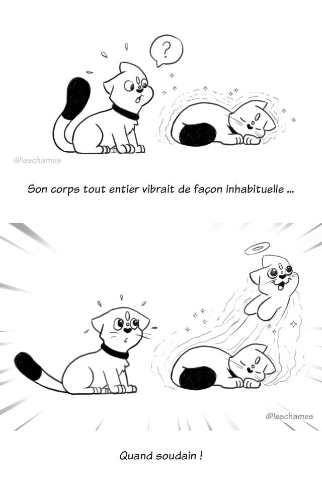 Les Châmes BD04 - les chats qui voulaient retenir les âmes - page02