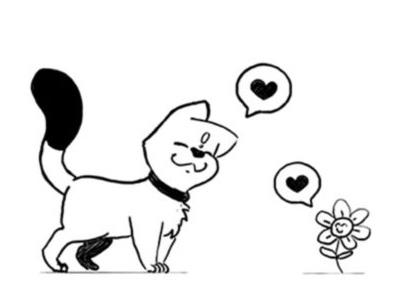 chat-fleur-leschames