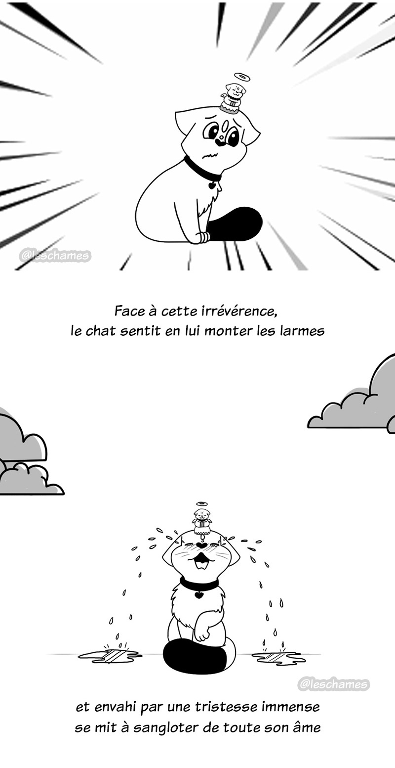 Le chat qui savait dompter le mental - Page05