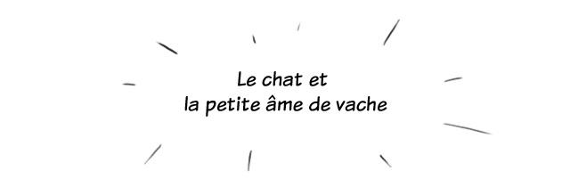 Peau d'âme- page01
